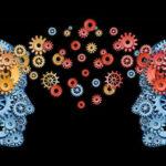 L'ignoranza e la connivenza